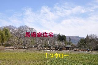 160327-k5.jpeg