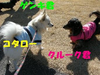 090208-k1-.jpg