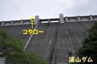 140814-k12.jpeg
