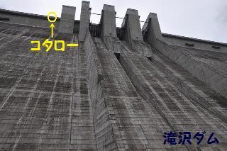 140814-k7.jpeg
